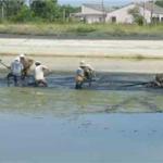 Độ kiềm trong nuôi trồng thủy sản