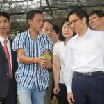 Phó Thủ tướng Chính phủ Vũ Đức Đam thăm Vườn Cây dược liệu – Trung tâm cây giống cây nguyên liệu Tam Đảo