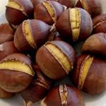 Món ăn từ hạt dể giúp bổ thận, bạn không nên bỏ qua