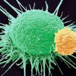 Phòng chống ung thư thêm hy vọng