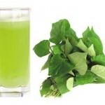 Nước ép rau giúp giải nhiệt mùa hè và phòng bệnh hiệu quả