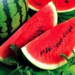 Phòng bệnh bằng rau quả và gia vị, bạn cần biết
