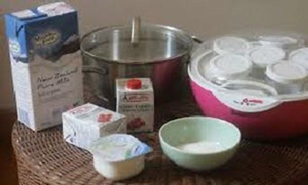Làm sữa chua bằng sữa tươi tại nhà