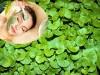 3 cách trị nám da với rau má không nên bỏ lỡ