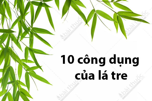 cong-dung-cua-la-tre-640x426