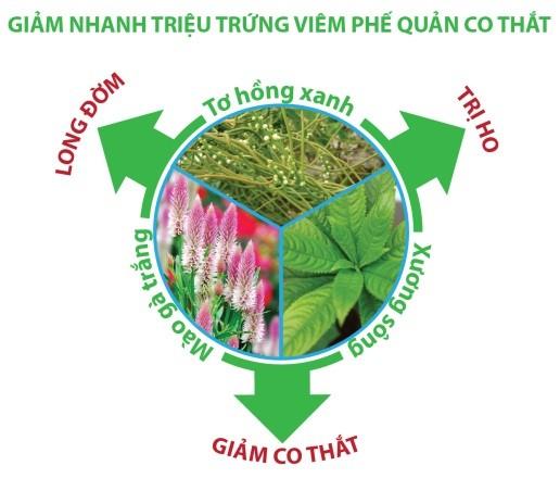 cuong-phe-1