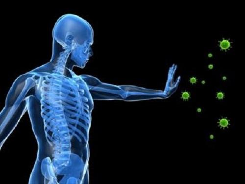 Cordycepin - thành phần điều trị ung thư của đông trùng hạ thảo