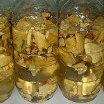 Điều trị và khắc phục bệnh ung thư hiệu quả bằng cây mật gấu