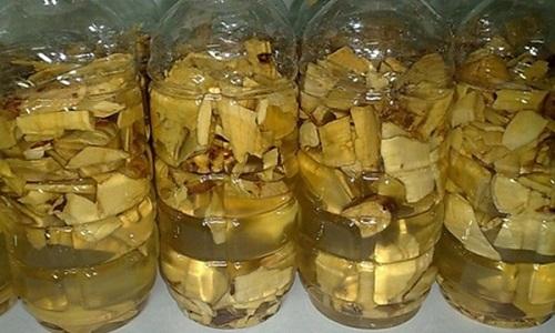 Các bài thuốc chữa bệnh hiệu quả từ mật gấu