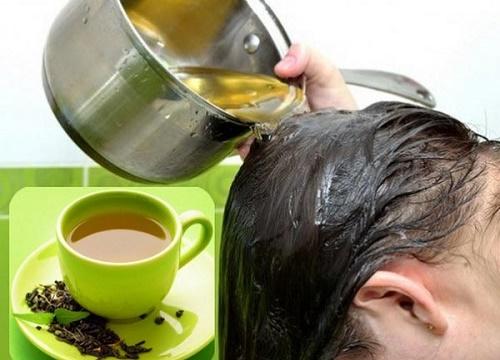 Điều trị rụng tóc hiệu quả và đơn giản bằng trà xanh