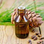 Công dụng trị bệnh từ hạt thông bạn đã biết chưa?
