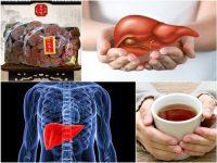Tác dụng của nấm linh chi với bệnh gan