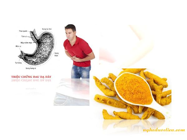 Hỗ trợ điều trị các bệnh về tiêu hóa và đường ruột
