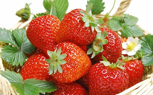 Các loại quả mọng giúp bảo vệ tế bào thần kinh hiệu quả
