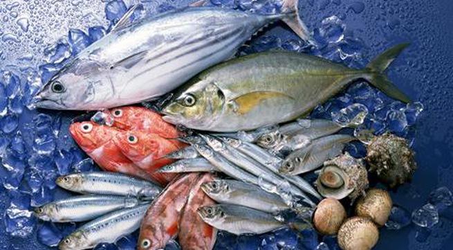 Bổ sung omega-3 từ các loại cá ngăn chặn bệnh Alzheimer