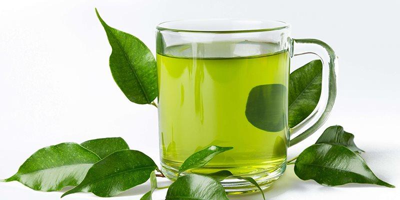 Trà xanh giúp phổi khỏe hơn nhờ hơp chất EGCG